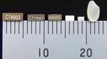 Quarze für Smart-Metering-Applikationen