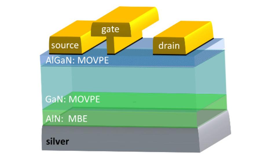 Schema der Transistorstruktur auf dem Silber-Substrat