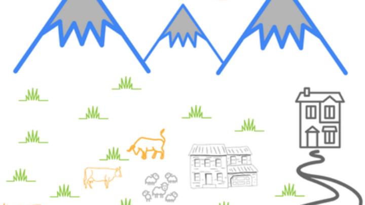 Tiere lassen sich auch in abgelegenen Gegenden mit Hilfe von LoRaWAN effektiv überwachen
