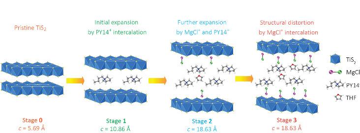 Dieses Schema zeigt die strukturelle Entwicklung von Titandisulfid in verschiedenen Stadien der Interkalation. Die Zwischenschicht wird erweitert oder verzerrt, indem unterschiedliche Mengen an Stützmolekülen, komplexen Kationen und Lösungsmitteln in die van-der-Waals-Lücke eines Wirtsmaterials eingelagert werden.
