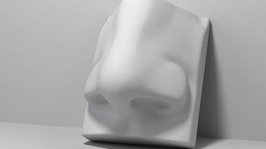 Die künstliche Nase