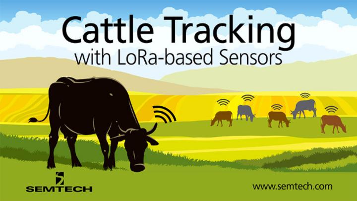 Chipsafer baut auf Basis von LoRa eine Iot-Plattform für die Überwachung von Vieh auf.