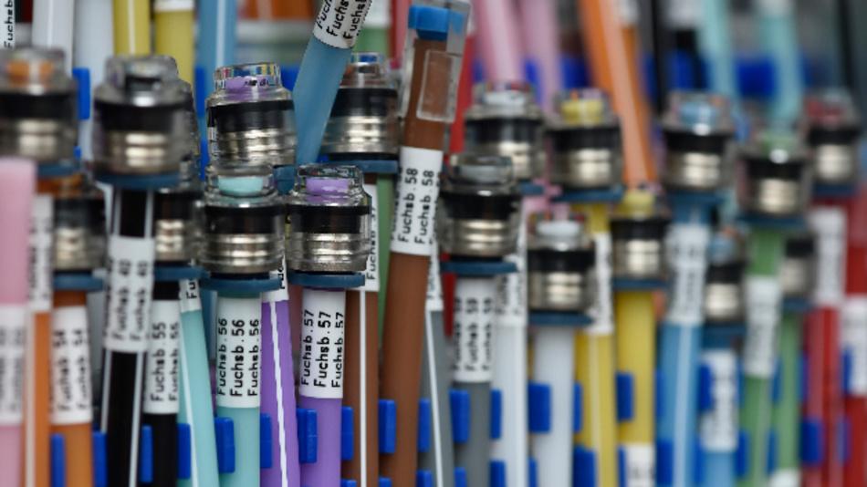 Glaserfaseranschlüsse in einem Verteilerkasten zu sehen.