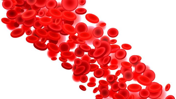 Einer Faser aus Kohlenstoffnanoröhren hilt bei der Stromerzeugung in Blutgefäßen.