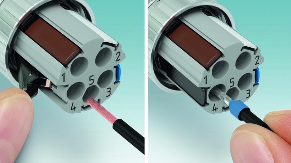 Bild 2: Mit dem Federkraftanschluss werden auch flexible Leiter ohne Aderendhülsen einfach und werkzeuglos kontaktiert (links). Starre und flexible Leiter mit Aderendhülse sind direkt steckbar.
