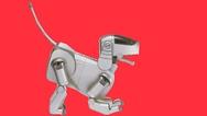 Ursprünglicher Roboterhund Aibo