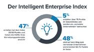 Intelligent Enterprise Index