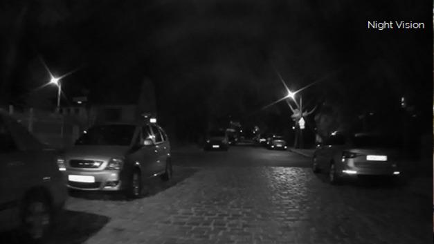 Brighter AI macht sich Deep-Learning-Anwendungen zunutze, um aus Nachtaufnahmen von Infrarotkameras wirklichkeitsgetreue Taglichtversionen zu rekonstruieren.