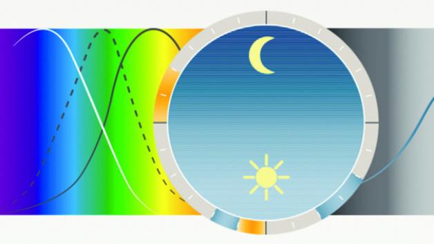 Human Centric Lighting (HCL): Menschen mit Licht steuern ...