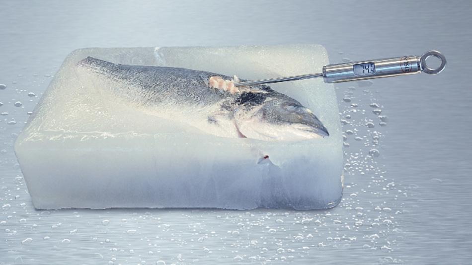 Mit der RF Energy Technik ist es möglich, einen im Eis eingefrorenen Fisch zu kochen,ohne dass das Eis schmilzt