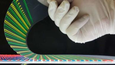 Flexibel, transparent und biologisch verträglich: die Stromquelle nach dem Zitteraal-Prinzip