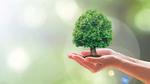 Mehr Nachhaltigkeit bei der Entwicklung von Stromversorgungen