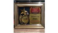 Consumer Choice Award 2017 India