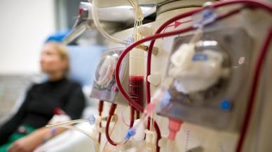 In Deutschland sind run 80.000 Menschen auf eine Dialyse angewiesen, weil  ihre eigenen Entgiftungsorgane nicht mehr arbeiten.