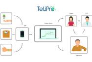 TeLiPro-Schaubild
