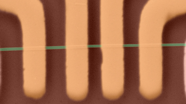 Microscopy image of an electronic device made with 1D ZrTe3 nanoribbons. The nanoribbon channel is indicated in green color. The metal contacts are shown in yellow color. Note than owing to the nanometer scale thickness the yellow metal contacts appear to be under the green channel while in reality they are on top. Pseudo-colors were used for clarity to show the nanoribbon and contacts.