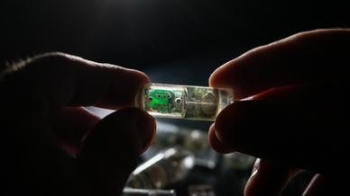 Ultra-Low-Power-Sensor mit gentechnisch veränderten Bakterien