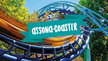 Assona-Coaster
