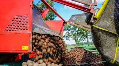 Optimierung der Kartoffelernte, Uni des Saarlandes