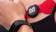 Evaluierungs- und Entwicklungsplattformen Max-Health-Band