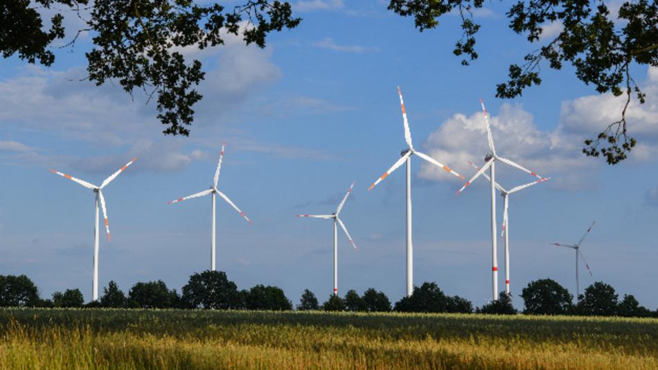 Windräder stehen auf einem Feld bei Sieversdorf.