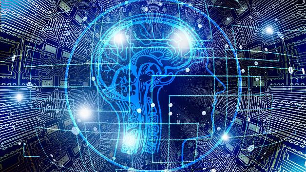Künstliche neuronale Netze: Schaltplan des menschlichen Gehirns ...
