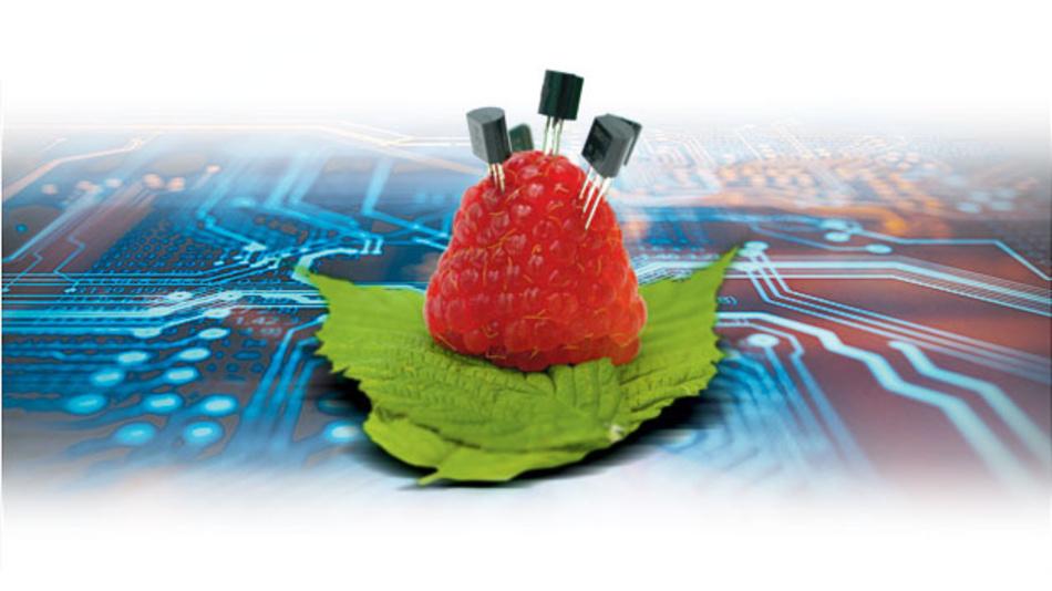 Der bekannteste Einplatinenrechner Raspberry Pi lässt sich mit Einschränkungen im industriellen Umfled nutzen.