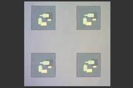 Optische Bilder zeigen Schaltungen des Forscherteams, die an nur wenige hundert Nanometer großen Partikeln befestigt sind.
