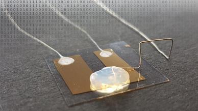 Einzelatom-Transistor