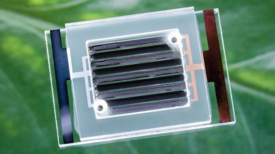 Bild 2.Bild 2. Ineinander verkämmte Elektroden sorgen für einen niedrigen Innenwiderstand.