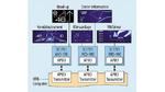 Beispiel einer Domain Computing Architecture mit Remote Displays