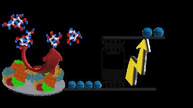 Moleküle reagieren spontan in einer enzymatischen Reaktion und setzen Elektronen frei, die dann einen elektronischen Flyback und einen Boost-Konverter antreiben.