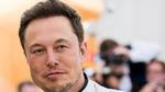 Tesla-Chef Musk provoziert weiter