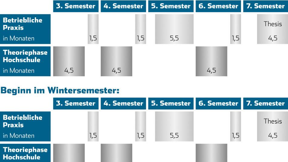 Der Ablauf des Bachelorprogramms STUP.