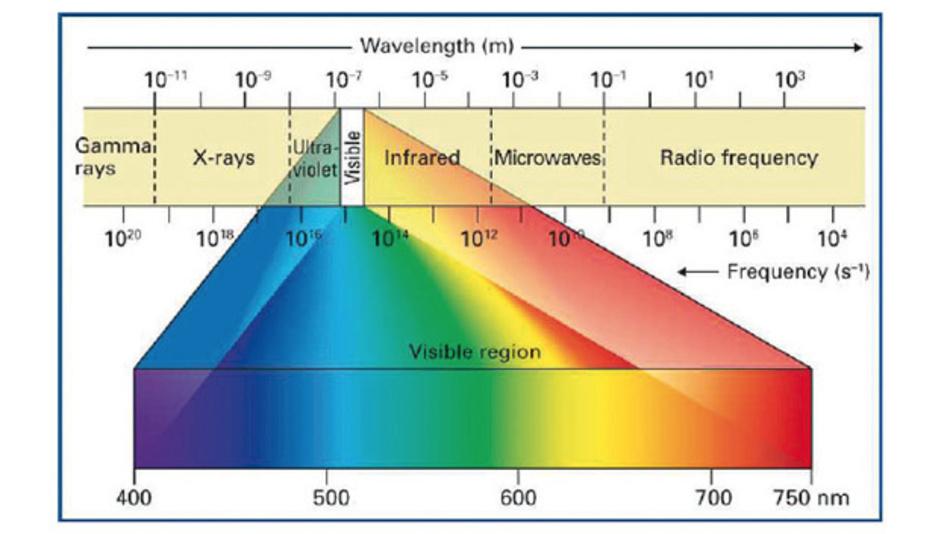 Bild 1: Das sichtbare Licht stellt einen kleinen Bruchteil des elektromagnetischen Spektrums dar und  bewegt sich im Bereich zwischen 400nm und 750nm.