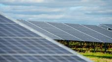 Solarpark Westhampnett