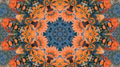 Muster Fraktal