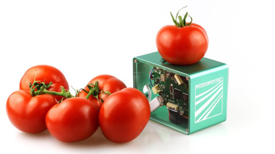 Sind die Tomaten noch essbar? Oder ist wegschmeißen die einzige Option? Ein mobiler Food-Scanner soll bei der Entscheidung helfen.