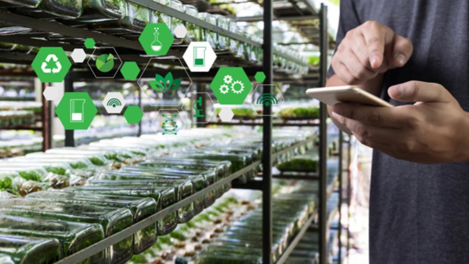 Nachhaltiger auf dem Feld wirtschaften, präziser Düngemittel und Pflanzenschutzmittel ausbringen, Herden elektronisch managen,Gewächshäuser steuern – all das benötigt künftig 5G.