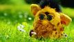 Furby: Nervig, aber intelligent