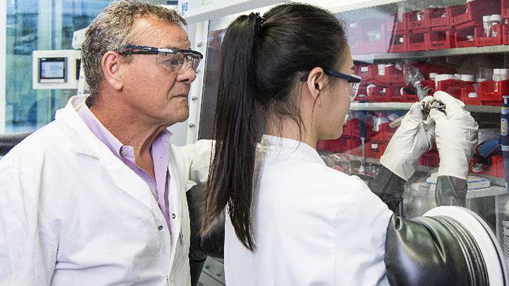 Professor Stefano Passerini und seine Mitarbeiterin Hyein Moon setzen an einer Handschuhbox eine Natrium-Ionen-Batterie zusammen