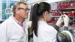 Forschung an Natrium-Ionen-Batterien