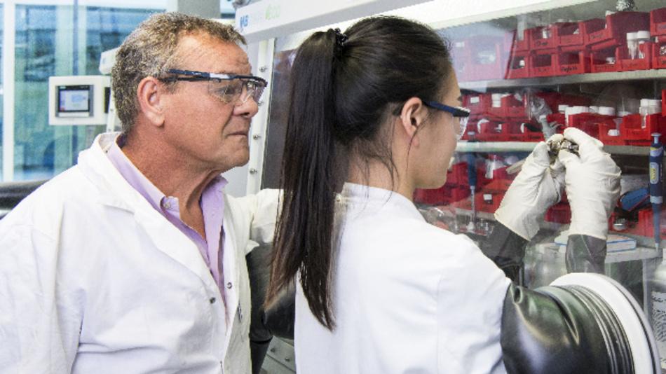 Professor Stefano Passerini und seine Mitarbeiterin Hyein Moon setzen an einer Handschuhbox eine Natrium-Ionen-Batterie zusammen.