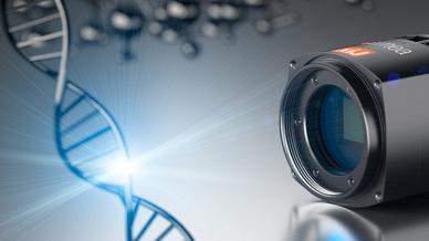 Bereits seit über 20 Jahren entwickelt und vertreibt das Unternehmen Hochleistungskameras für verschiedene Anwendungen.