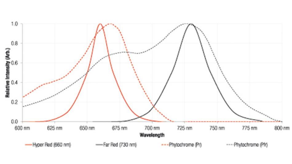 Die Absorptionsspektren der Phytochromen Pr und Prf und die Lichtleistung der hyperroten (150353HS74500) und dunkelroten (150353FS74500) keramischen WL-SMDC-LEDs.