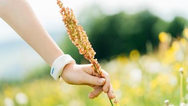 Das Armband soll vor Steckmücken schützen