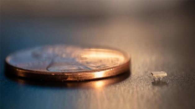 Größenvergleich des Micro-Borsten-Bots mit einem Penny