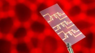 Multi-Elektrodenlayout zur parallelen Untersuchung mehrerer Zellproben in Mikrofluidik-Chips.