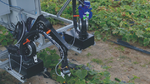Baukasten für den Einstieg in die Robotik