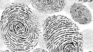 Fingerabdruck, Biometrie